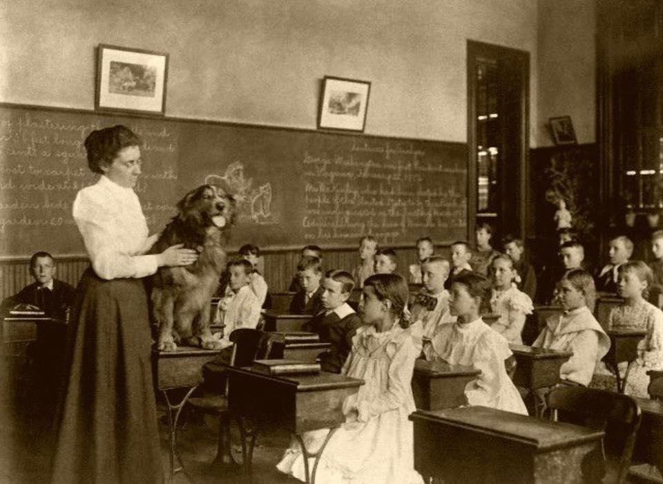School / Education – The Victorian Historian